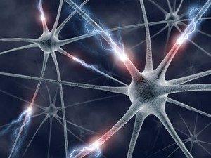 conexión-neuronal-300x225