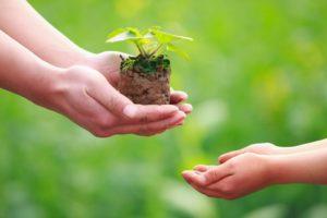 dar-y-recibir-semilla